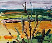 Fields in July, study | Shona Barr